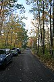 Fall road - panoramio.jpg