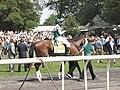 Fantasia (horse).jpg