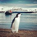 Farewell Antarctica (8373303193).jpg
