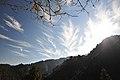 Feather - panoramio.jpg