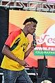 FestAfrica 2017 (23722746848).jpg
