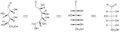 Fischer projection - projection of D-glucose.png