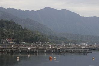 Lake Maninjau - Fish embankment in the lake.