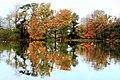 Fishing at Hunstrete Lake in Autumn - panoramio.jpg