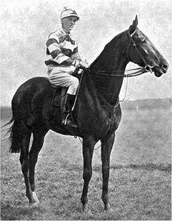 Flair (horse) British Thoroughbred racehorse