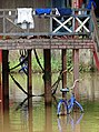 Flooded Property with Bicycle - Stung Treng - Cambodia (48444456771).jpg