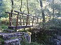 Footbridge Silver Cove Beck - geograph.org.uk - 1491227.jpg
