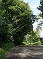 Footpath - Church Lane - geograph.org.uk - 903887.jpg