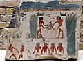 Fowling with a dragnet, agricultural scene, and handling ducks. Wall fragment from the Sun Temple of Nyuserre Ini at Abu Gurob, Egypt. c. 2430 BCE. Neues Museum.jpg