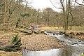 Fun in the River Brock - geograph.org.uk - 1174673.jpg