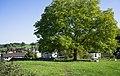 GE0019b Burgstelle Elsau.jpg