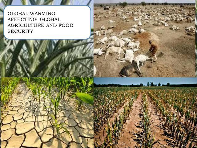 Klimafolgen für Landwitschaft und Ernährung