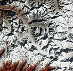 Gangotri India ESA415382.jpg