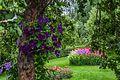 Garden in Helsinki, Finland 06.jpg