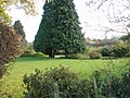 Garden in Otham, near Maidstone, Kent in southern England. - panoramio.jpg