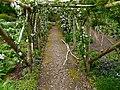 Garden walk - geograph.org.uk - 1109217.jpg