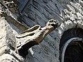 Gargouille de la collégiale Saints-Pierre-et-Guidon - Anderlecht (2).jpg