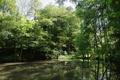 Gemuenden Ehringshausen Feldatal Felda Tributary lake p.png