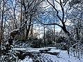 Georgia snow IMG 4740 (27170176909).jpg