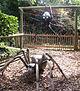 Giant Bug Walk spiders