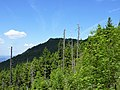 Gipfel-Blick zum Kleinen Osser.jpg