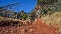 Girdner Trail (39128121385).jpg