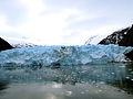 Glaciar Garibaldi.JPG