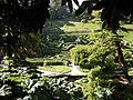 Glendurgan Garden, The Maze - geograph.org.uk - 224932.jpg