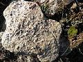 Granates (5640599557).jpg