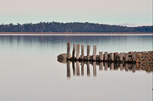 Great lake reflections.jpg