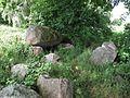 Großsteingrab auf dem Ladenesch.JPG