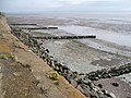 Groynes at Goldcliff Point - geograph.org.uk - 750771.jpg