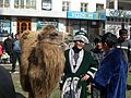 Guy with Camel (5663165630) (2).jpg