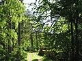Hårup Sande - panoramio.jpg