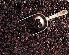 Hạt cà phê México.jpg
