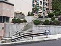 HK ML 香港半山區 Mid-levels 舊山頂道 Old Peak Road near Dynasty Court April 2020 SS2 05.jpg