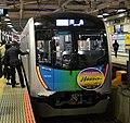 Haijima Liner 40000 series.jpg