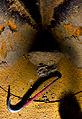 Half-Life crowbar.jpg