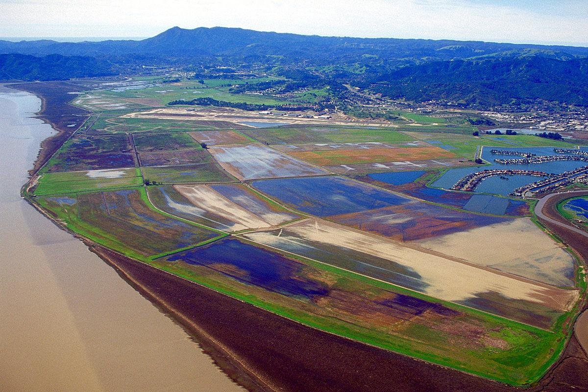 whiteside marsh wikipedia