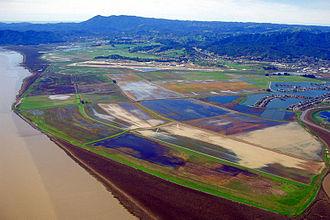 Whiteside marsh - The Hamilton Wetland Restoration Project at Whiteside Marsh, on the former Hamilton Air Force Base.