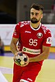 Handball-WM-Qualifikation AUT-BLR 034.jpg