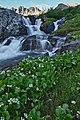 Handies Peak WSA (9466493664).jpg