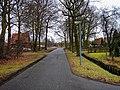 Harderwijk - Tonsel - Weisteeg - View ESE.jpg