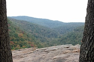 Boston Mountains - Image: Hawksbill Crag trail 006