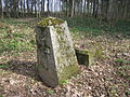 Heimtali mõisa kalmistu 02.JPG