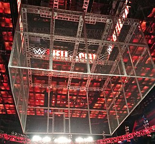 Hell in a Cell Professional wrestling match type