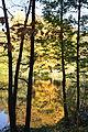 Herbst - 2.jpg