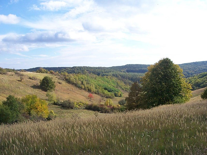 File:Hills in baranya county, hungary.jpg