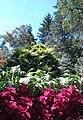 Hillwood Gardens in September (21660312545).jpg