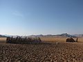 Himba Tribe settlement.jpg